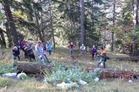 Aktion Schutzwald 2015