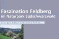 Faszination Feldberg