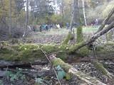 Landschaftspflegetag 2015