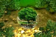 environmental-protection-326923 1920
