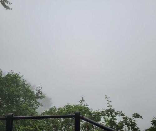"""""""Aussicht"""" vom grünen Fels am Samstag"""