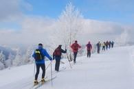 Wintertouren: Schnupperkurs Langlauf im Schwarzwald 21.1.-23.1.2011